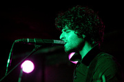 goldenanimals_mercurylounge_16